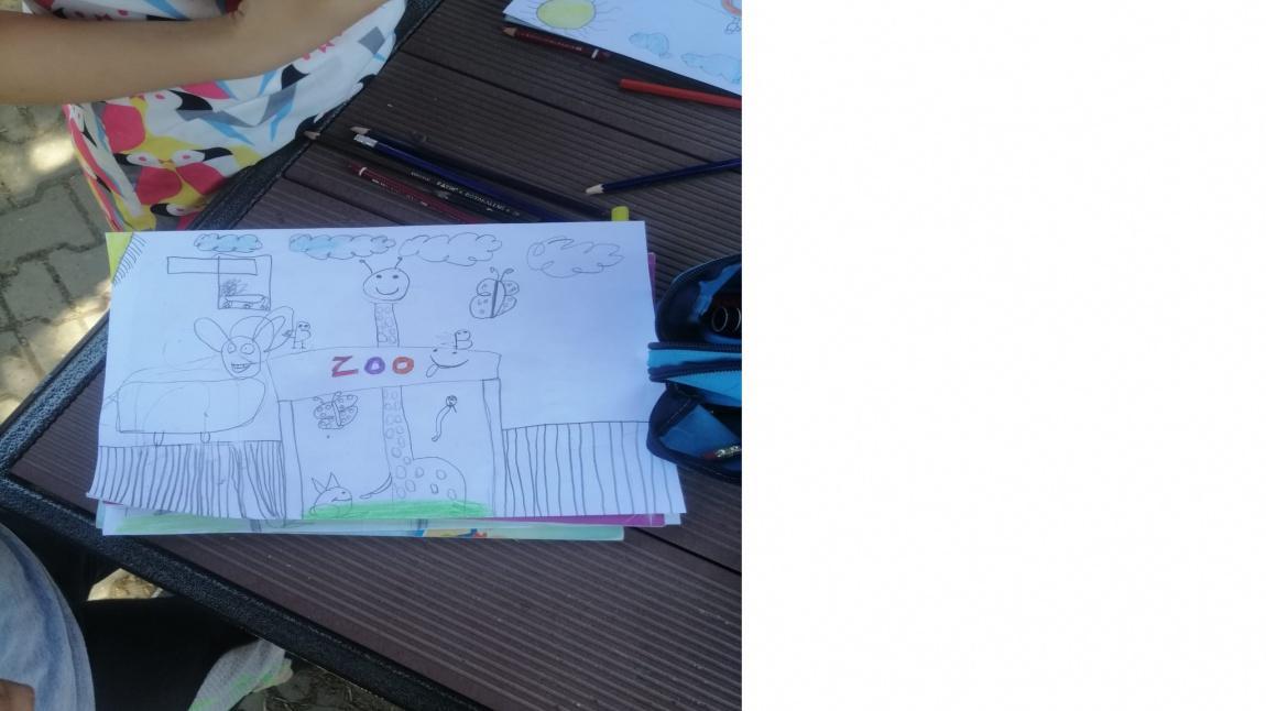 3/B Sınıfı 'My Zoo' Etkinliği