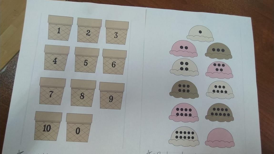 Papatyalar Sınıfı 'Sayıları Eşleştirme Etkinliği'